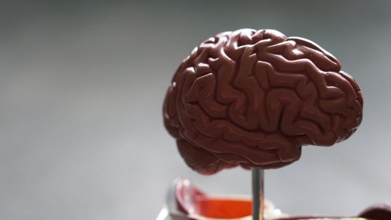 Jak zlepšit krátkodobou paměť?