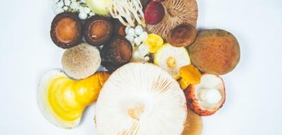 7 statečných v boji proti nemoci aneb potraviny, které vás zvednou ze židle!