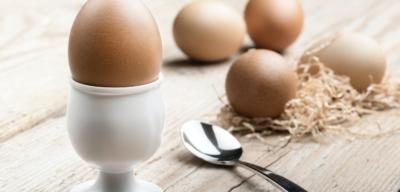 Bílkoviny pro vyváženou stravu a zdravé tělo